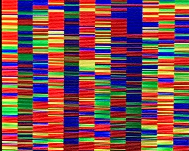 Farbiges Abbild der DNA-Sequenzen