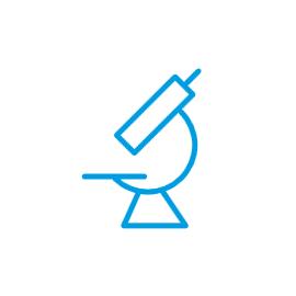 Icon - Institut für Vaskular- und Inselzellbiologie