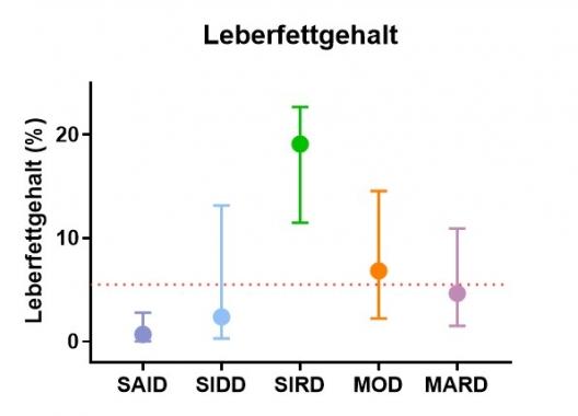 Grafik zur Leberfettgehalt